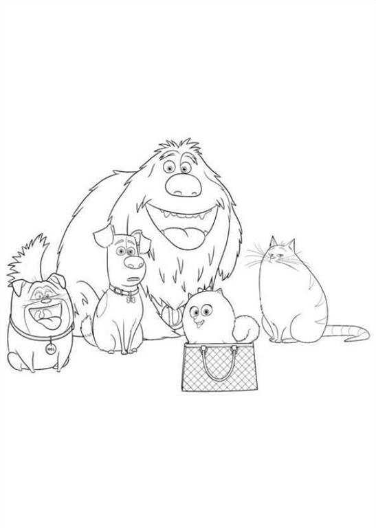 The Secret Life Of Pets Free Coloring Images Pages To Print Colorpages Org